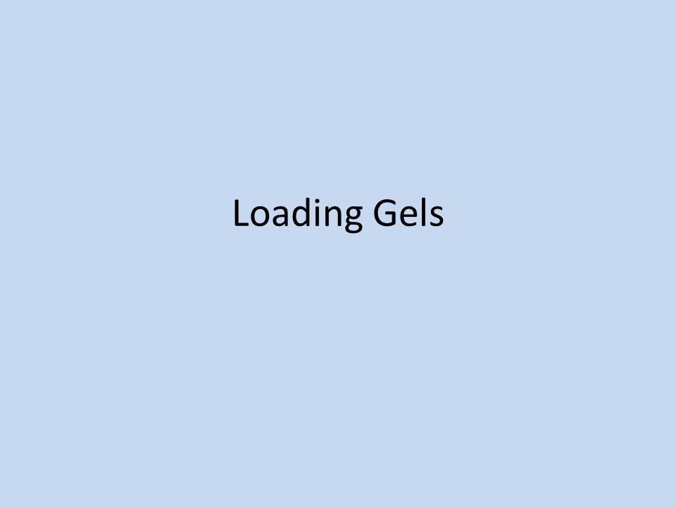 Loading Gels