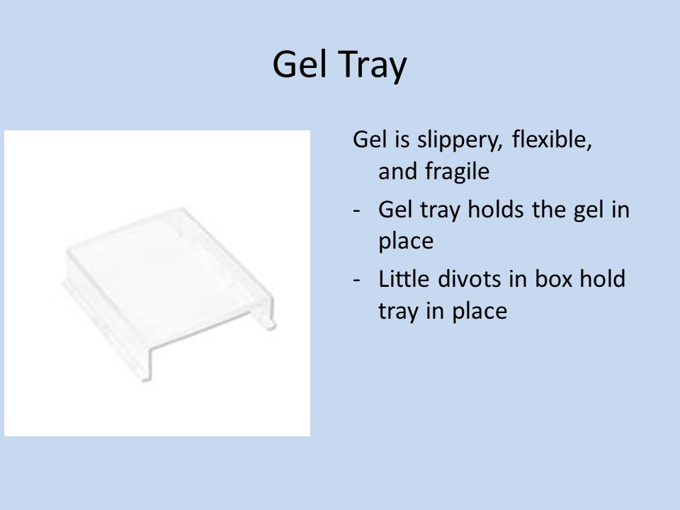 Gel Tray Gel is slippery, flexible, and fragile -Gel tray holds the gel in place -Little divots in box hold tray in place
