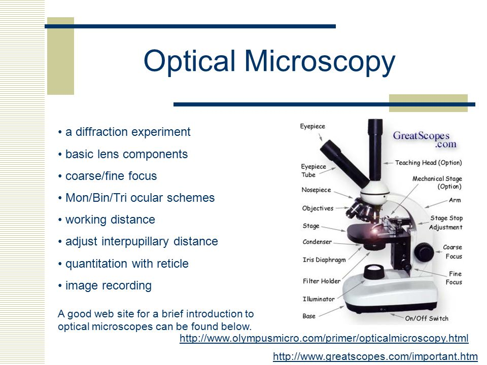 Optical Microscopy a diffraction experiment basic lens components coarse/fine focus Mon/Bin/Tri ocular schemes working distance adjust interpupillary