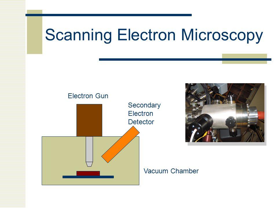 Scanning Electron Microscopy Electron Gun Secondary Electron Detector Vacuum Chamber