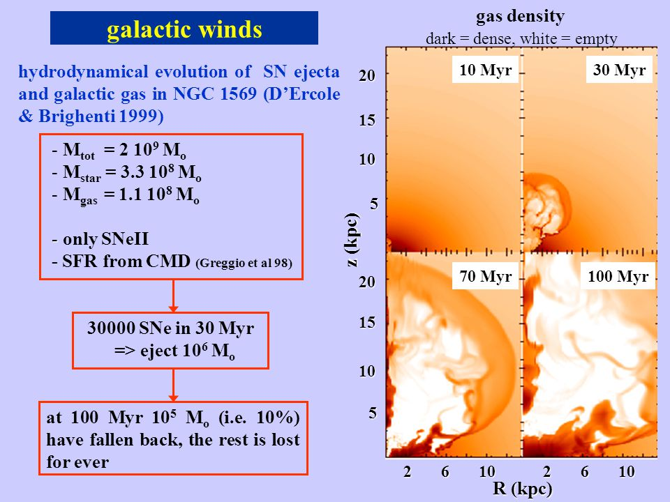 galactic winds R (kpc) 2 6 10 201510 5 20 15 10 5 z (kpc) gas density 10 Myr30 Myr 70 Myr100 Myr hydrodynamical evolution of SN ejecta and galactic gas in NGC 1569 (D'Ercole & Brighenti 1999) - - M tot = 2 10 9 M o - - M star = 3.3 10 8 M o - - M gas = 1.1 10 8 M o - - only SNeII - SFR from CMD (Greggio et al 98) 30000 SNe in 30 Myr => eject 10 6 M o at 100 Myr 10 5 M o (i.e.