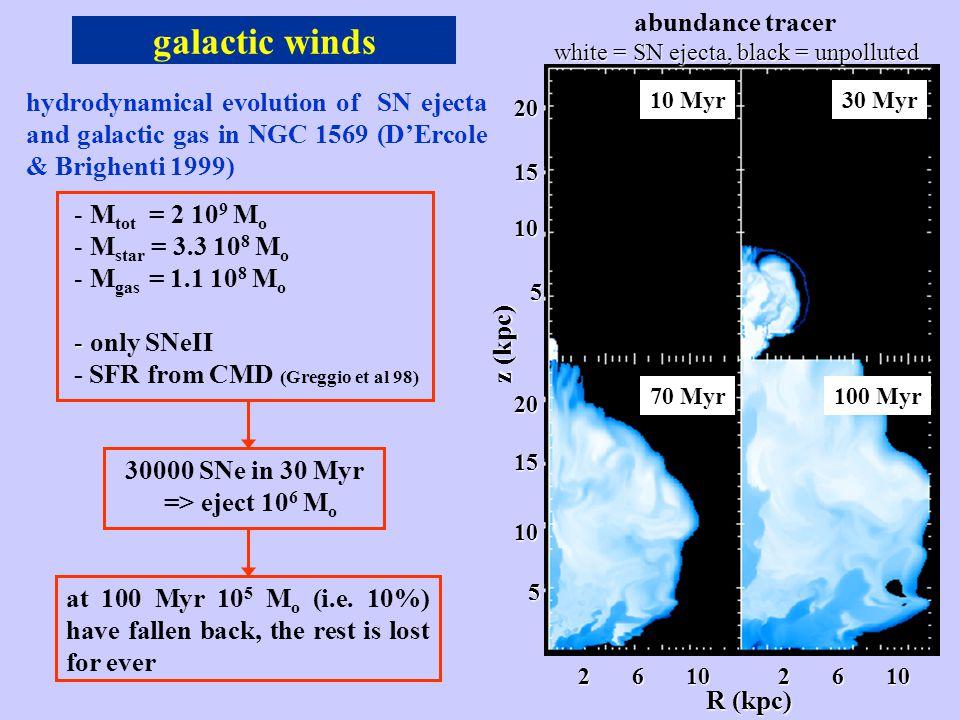 galactic winds R (kpc) 2 6 10 201510 5 20 15 10 5 z (kpc) abundance tracer 10 Myr30 Myr 70 Myr100 Myr hydrodynamical evolution of SN ejecta and galactic gas in NGC 1569 (D'Ercole & Brighenti 1999) - - M tot = 2 10 9 M o - - M star = 3.3 10 8 M o - - M gas = 1.1 10 8 M o - - only SNeII - SFR from CMD (Greggio et al 98) 30000 SNe in 30 Myr => eject 10 6 M o at 100 Myr 10 5 M o (i.e.