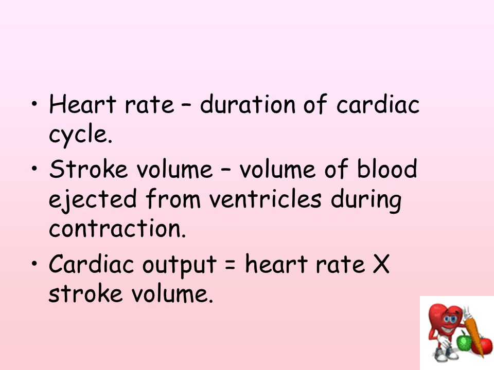 Heart rate – duration of cardiac cycle.