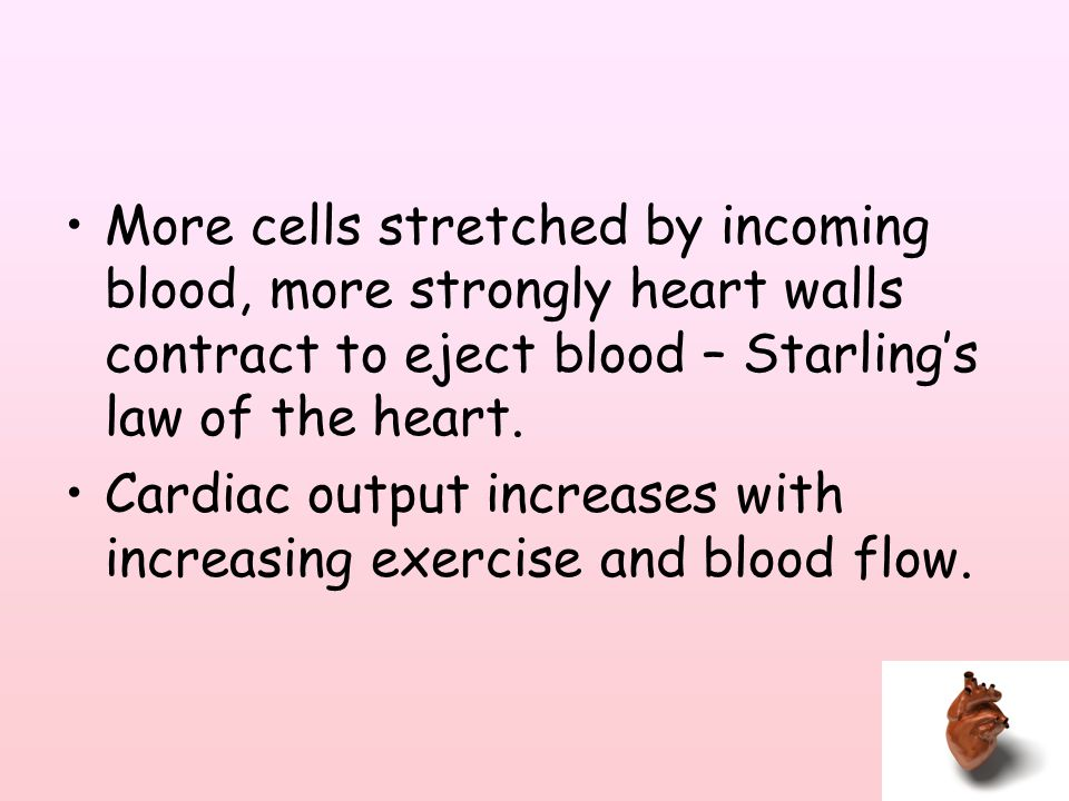 More cells stretched by incoming blood, more strongly heart walls contract to eject blood – Starling's law of the heart.