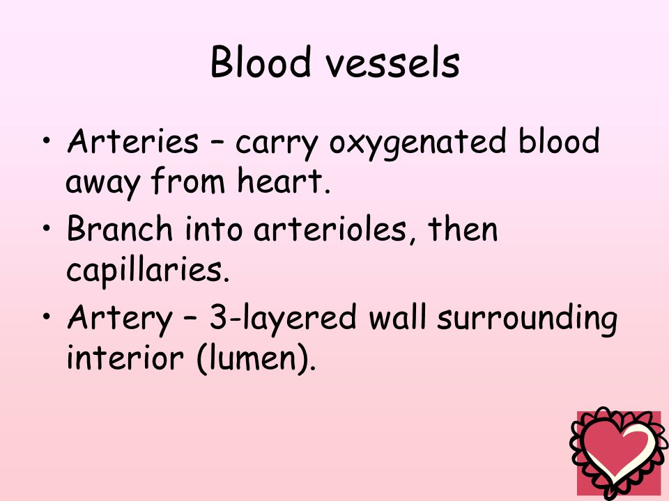 Blood vessels Arteries – carry oxygenated blood away from heart.