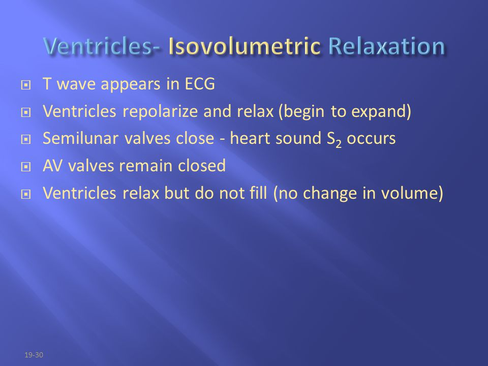19-30  T wave appears in ECG  Ventricles repolarize and relax (begin to expand)  Semilunar valves close - heart sound S 2 occurs  AV valves remain