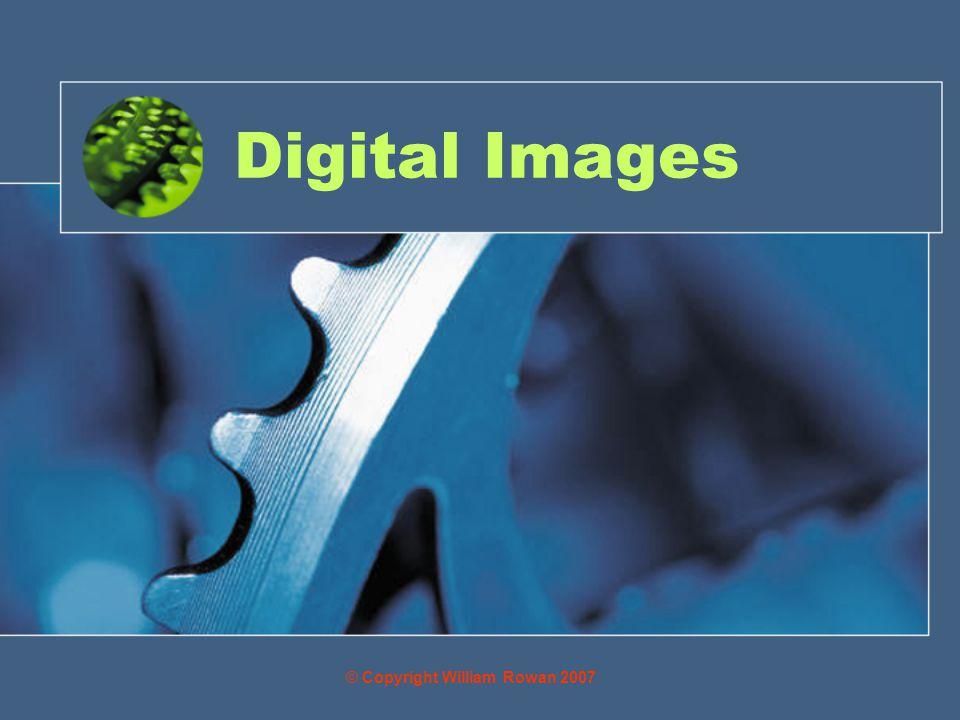 Digital Images © Copyright William Rowan 2007