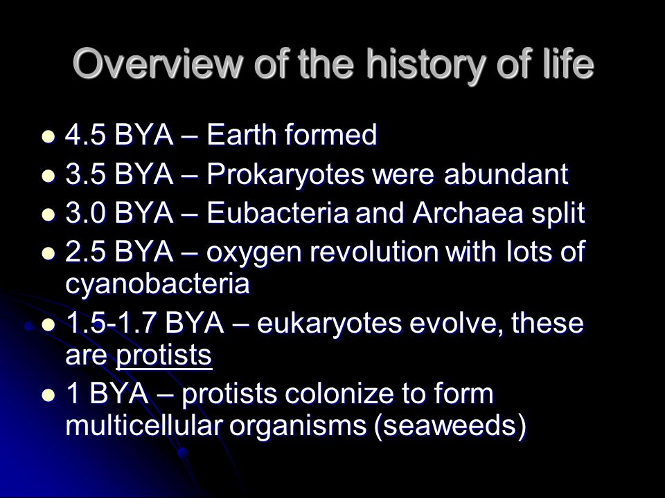 Overview of the history of life 4.5 BYA – Earth formed 4.5 BYA – Earth formed 3.5 BYA – Prokaryotes were abundant 3.5 BYA – Prokaryotes were abundant 3.0 BYA – Eubacteria and Archaea split 3.0 BYA – Eubacteria and Archaea split 2.5 BYA – oxygen revolution with lots of cyanobacteria 2.5 BYA – oxygen revolution with lots of cyanobacteria 1.5-1.7 BYA – eukaryotes evolve, these are protists 1.5-1.7 BYA – eukaryotes evolve, these are protists 1 BYA – protists colonize to form multicellular organisms (seaweeds) 1 BYA – protists colonize to form multicellular organisms (seaweeds)