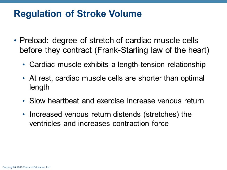Copyright © 2010 Pearson Education, Inc. Regulation of Stroke Volume Preload: degree of stretch of cardiac muscle cells before they contract (Frank-St