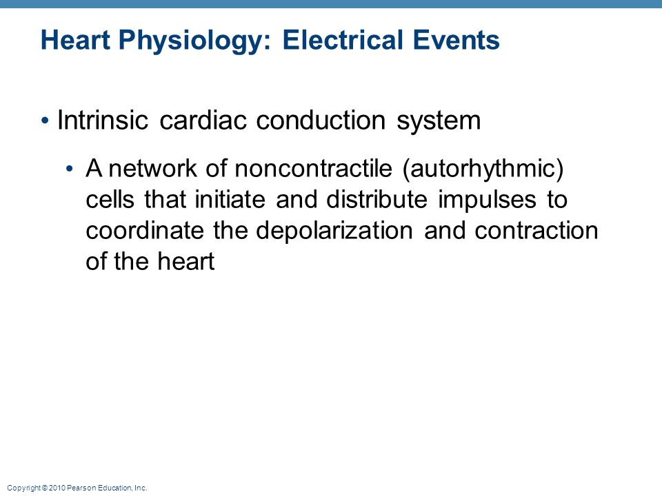 Copyright © 2010 Pearson Education, Inc. Heart Physiology: Electrical Events Intrinsic cardiac conduction system A network of noncontractile (autorhyt