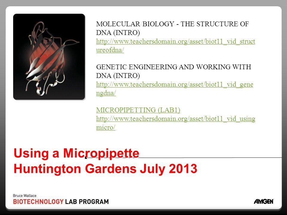 Using a Micropipette Huntington Gardens July 2013 MOLECULAR BIOLOGY - THE STRUCTURE OF DNA (INTRO) http://www.teachersdomain.org/asset/biot11_vid_stru
