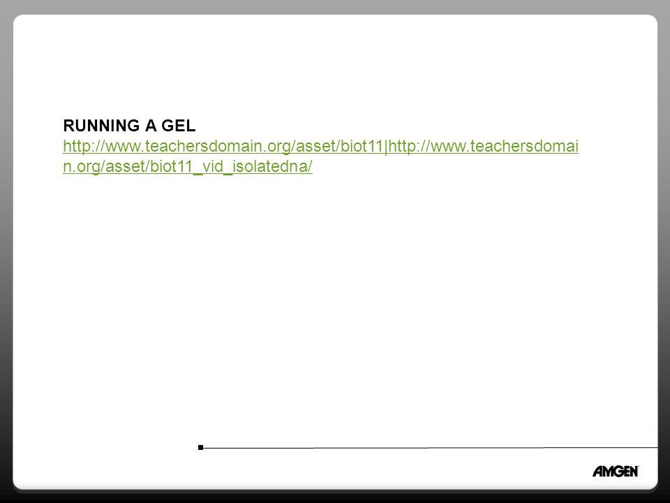RUNNING A GEL http://www.teachersdomain.org/asset/biot11|http://www.teachersdomai n.org/asset/biot11_vid_isolatedna/