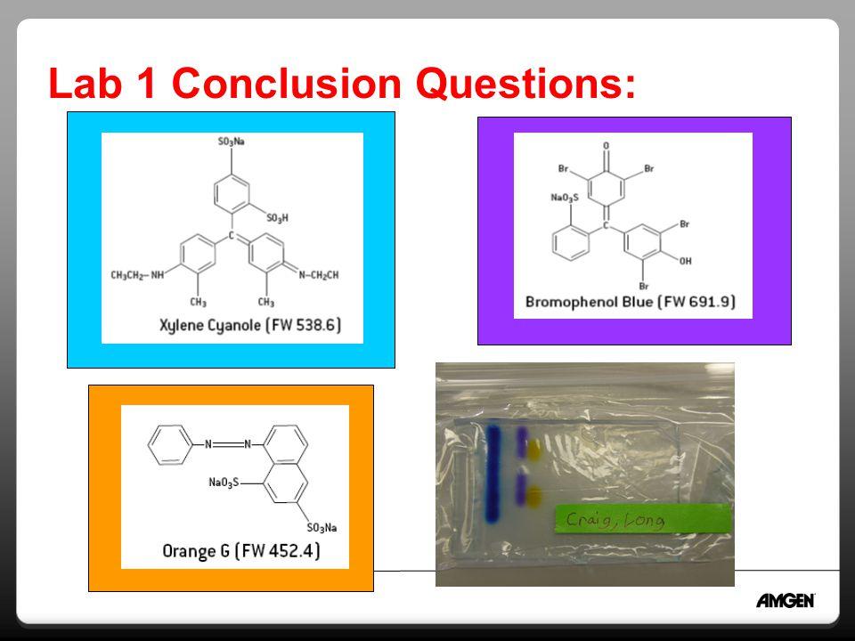 Lab 1 Conclusion Questions: