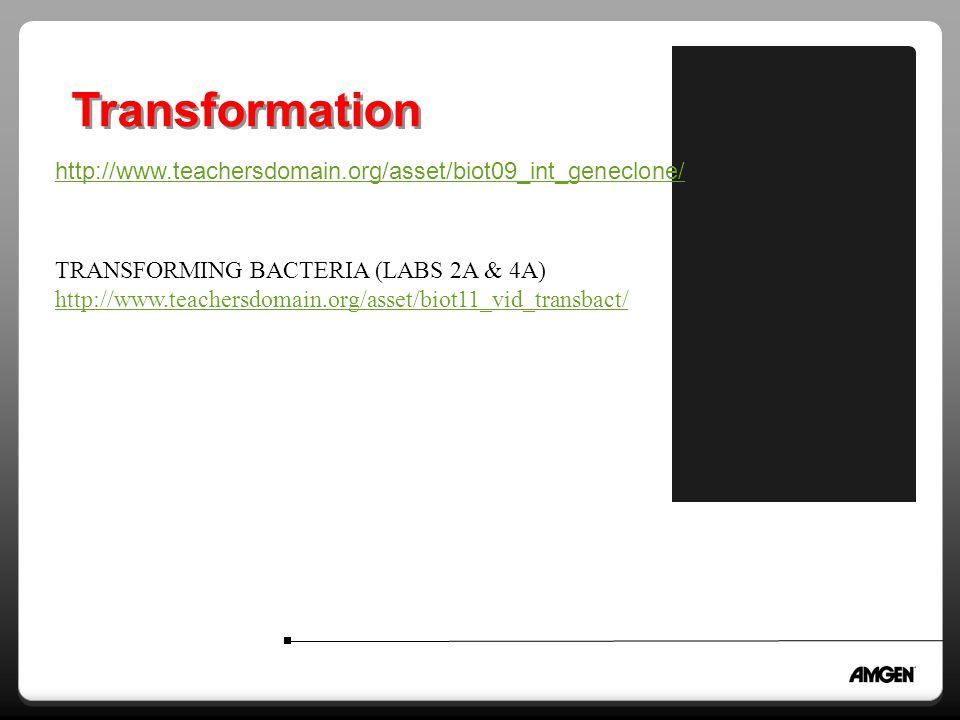 Transformation TRANSFORMING BACTERIA (LABS 2A & 4A) http://www.teachersdomain.org/asset/biot11_vid_transbact/ http://www.teachersdomain.org/asset/biot