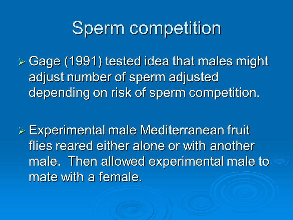 Sperm competition  Gage (1991) tested idea that males might adjust number of sperm adjusted depending on risk of sperm competition.  Experimental ma