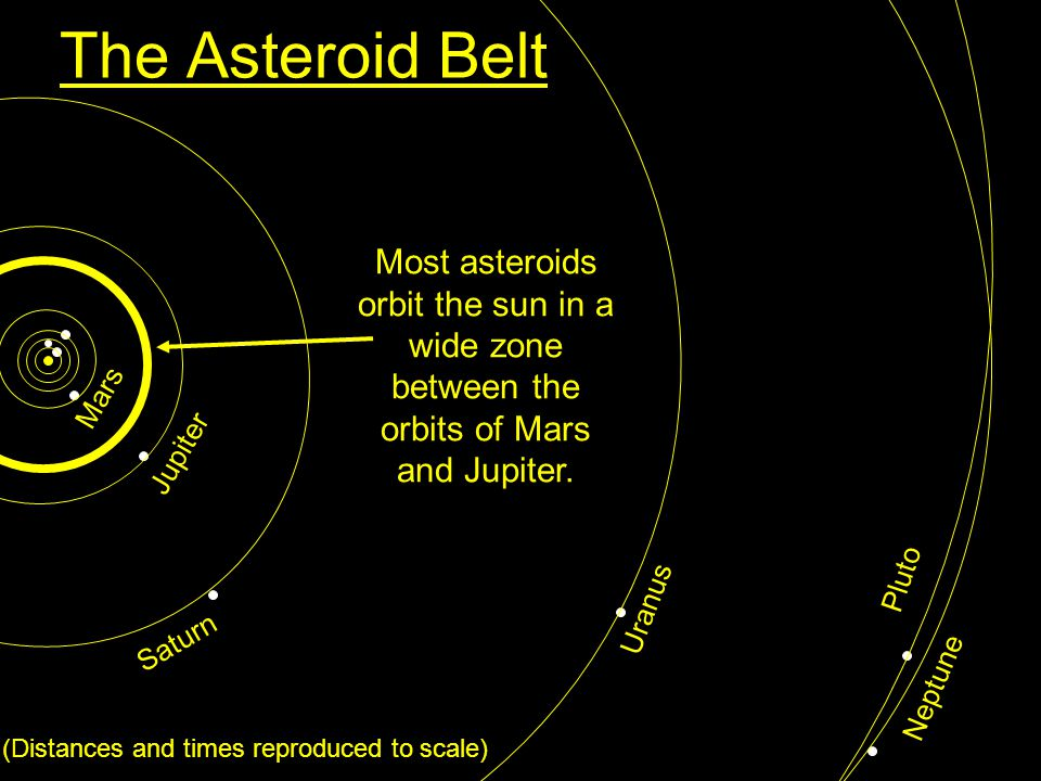 The Asteroid Belt Pluto Neptune Uranus Saturn Jupiter Mars (Distances and times reproduced to scale) Most asteroids orbit the sun in a wide zone betwe