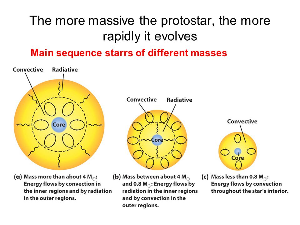 The more massive the protostar, the more rapidly it evolves Main sequence starrs of different masses