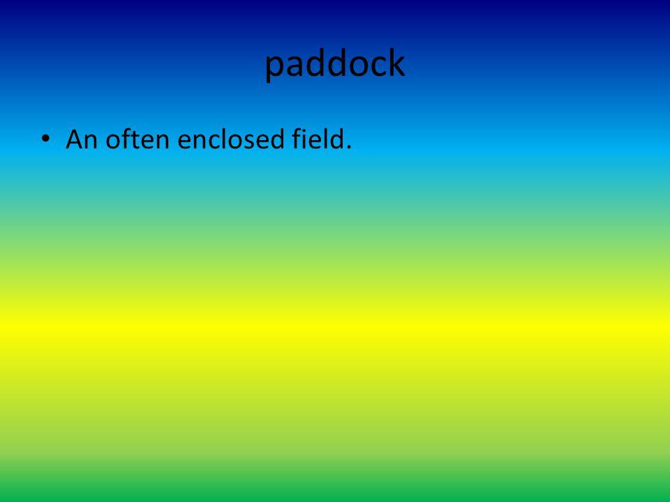paddock An often enclosed field.