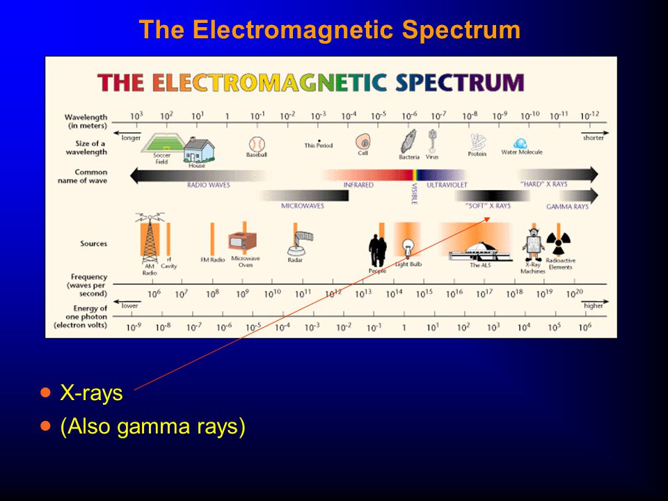The Electromagnetic Spectrum  X-rays  (Also gamma rays)