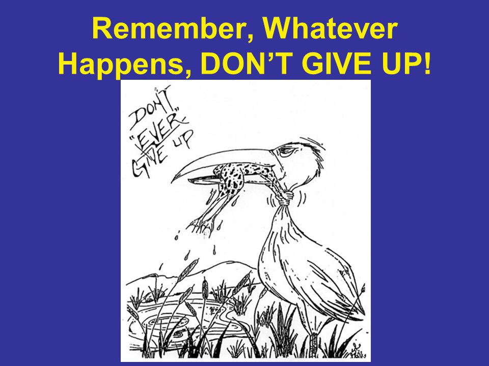 Remember, Whatever Happens, DON'T GIVE UP!