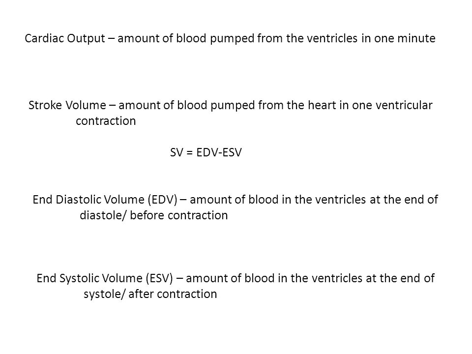 Cardiac Output – amount of blood pumped from the ventricles in one minute Stroke Volume – amount of blood pumped from the heart in one ventricular con
