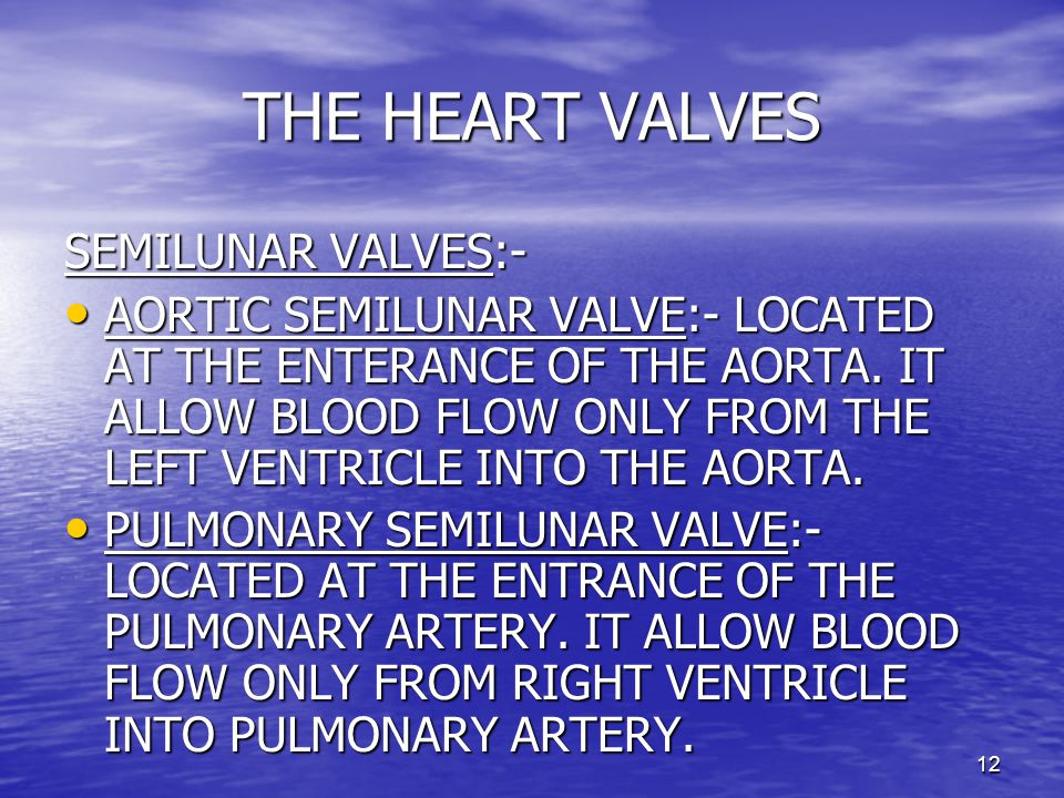 12 THE HEART VALVES SEMILUNAR VALVES:- AORTIC SEMILUNAR VALVE:- LOCATED AT THE ENTERANCE OF THE AORTA.