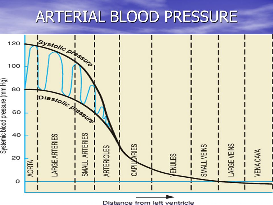 27 ARTERIAL BLOOD PRESSURE