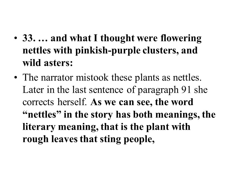 33. … and what I thought were flowering nettles with pinkish-purple clusters, and wild asters: The narrator mistook these plants as nettles. Later in