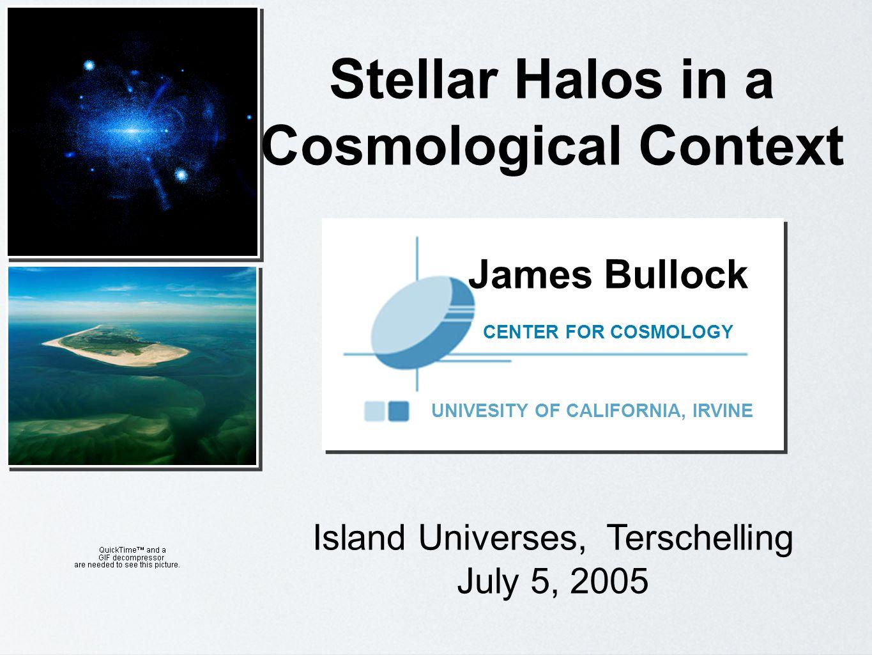 J. Bullock, UC Irvine. Island Universes, July 3-8 2005, Terschelling External Galaxy View