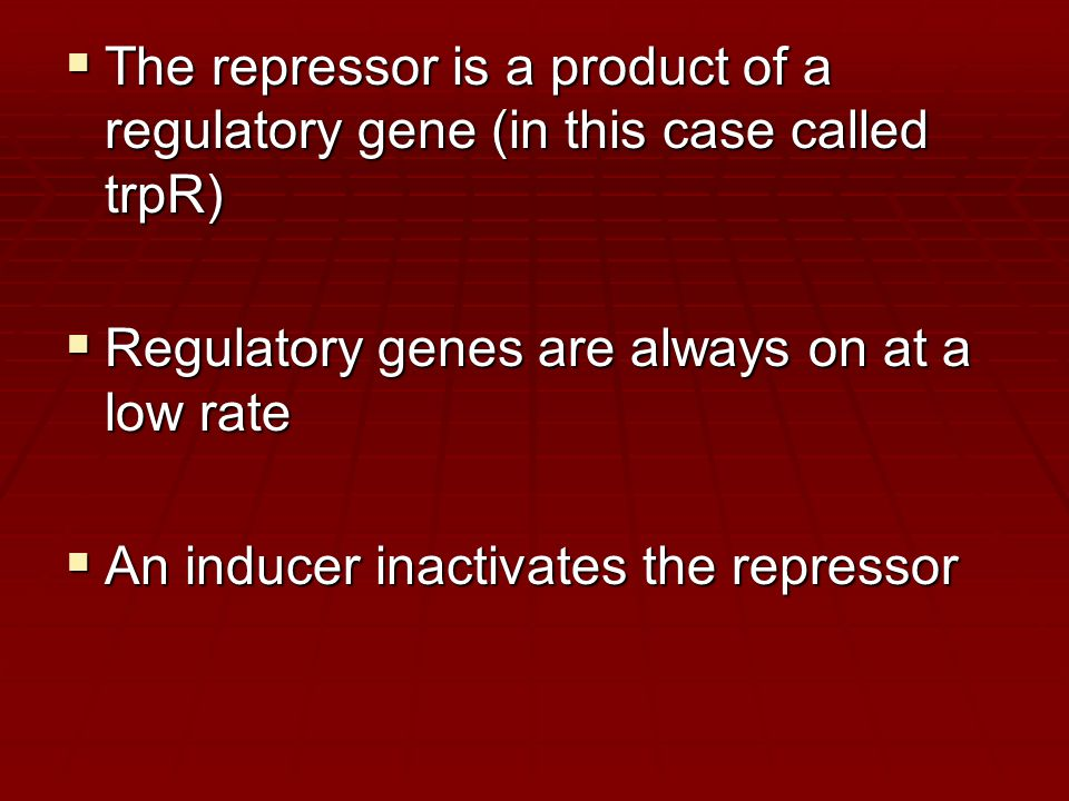  The repressor is a product of a regulatory gene (in this case called trpR)  Regulatory genes are always on at a low rate  An inducer inactivates t