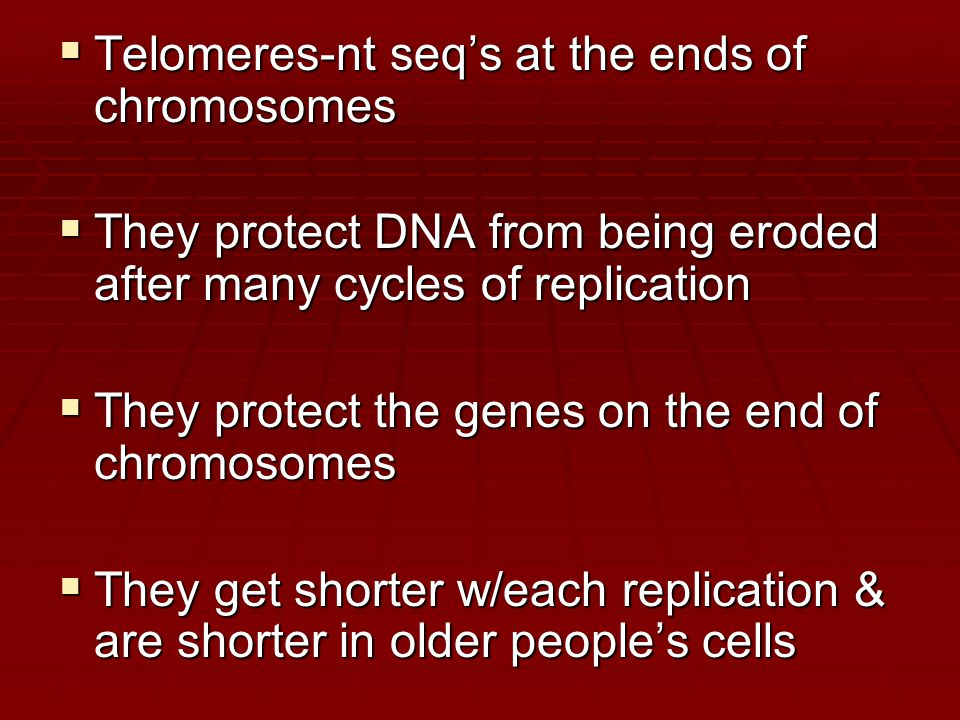  Telomeres-nt seq's at the ends of chromosomes  They protect DNA from being eroded after many cycles of replication  They protect the genes on the end of chromosomes  They get shorter w/each replication & are shorter in older people's cells
