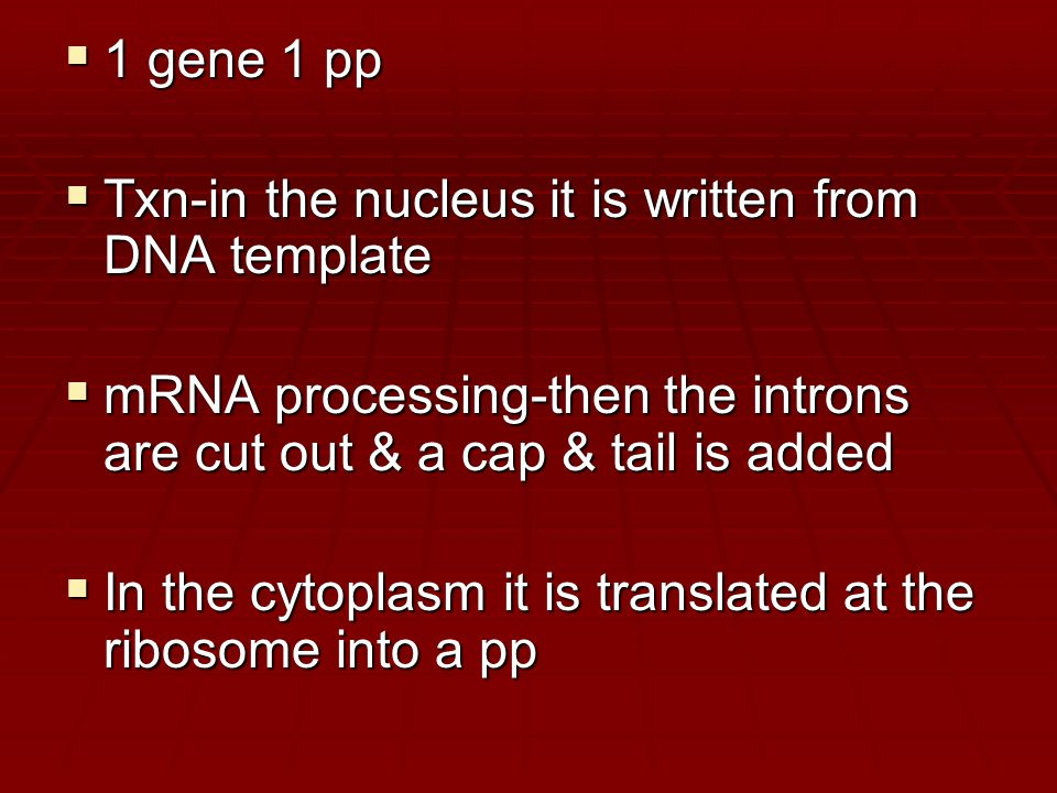  1 gene 1 pp  Txn-in the nucleus it is written from DNA template  mRNA processing-then the introns are cut out & a cap & tail is added  In the cytoplasm it is translated at the ribosome into a pp