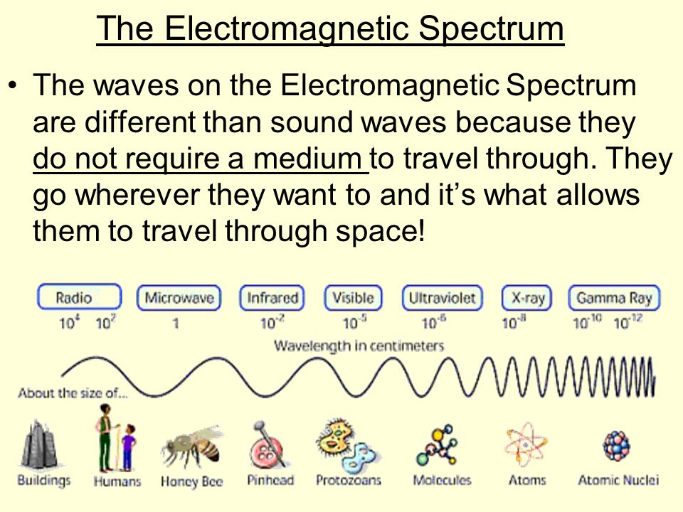 Order of the Waves Left Side Right Side Lowest frequency Highest frequency Lowest Energy Highest Energy Longest Wavelength Shortest Wavelength Radio Gamma Microwaves X-rays InfraredUltraviolet Visible