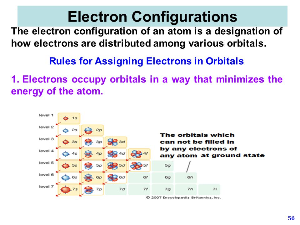 56 The electron configuration of an atom is a designation of how electrons are distributed among various orbitals. Rules for Assigning Electrons in Or