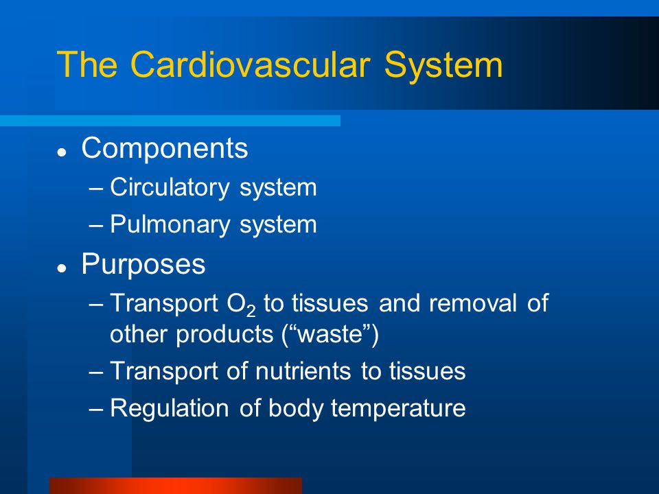 The Cardiovascular System Components –Circulatory system –Pulmonary system Purposes –Transport O 2 to tissues and removal of other products ( waste ) –Transport of nutrients to tissues –Regulation of body temperature