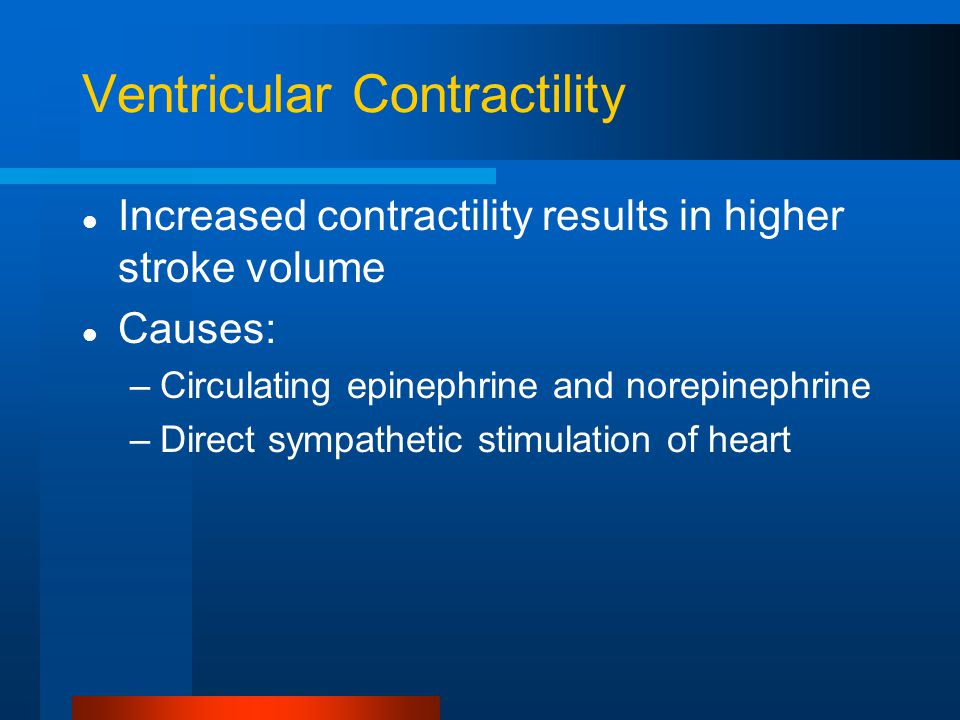 Ventricular Contractility Increased contractility results in higher stroke volume Causes: –Circulating epinephrine and norepinephrine –Direct sympathetic stimulation of heart