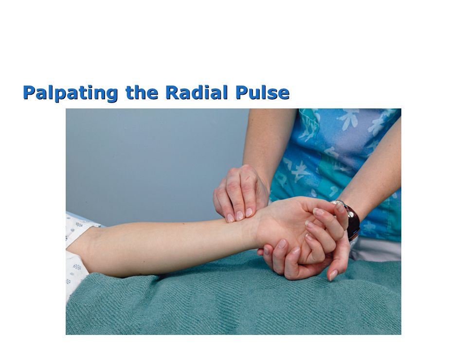 Palpating the Radial Pulse