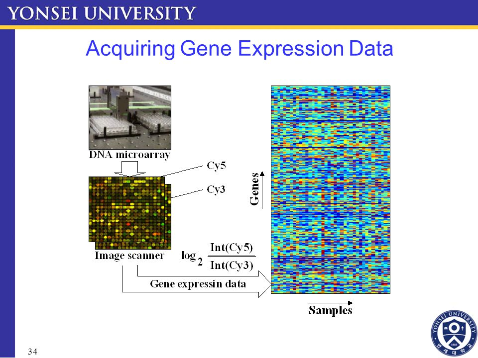 34 Acquiring Gene Expression Data