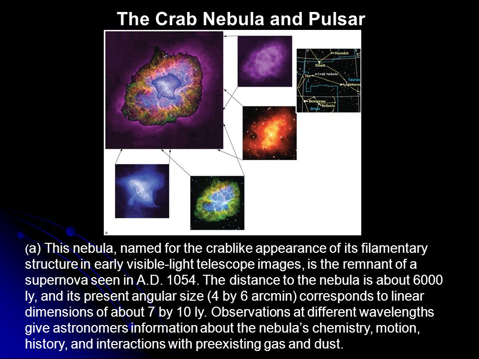 The Crab Nebula and Pulsar ( a) This nebula, named for the crablike appearance of its filamentary structure in early visible-light telescope images, i