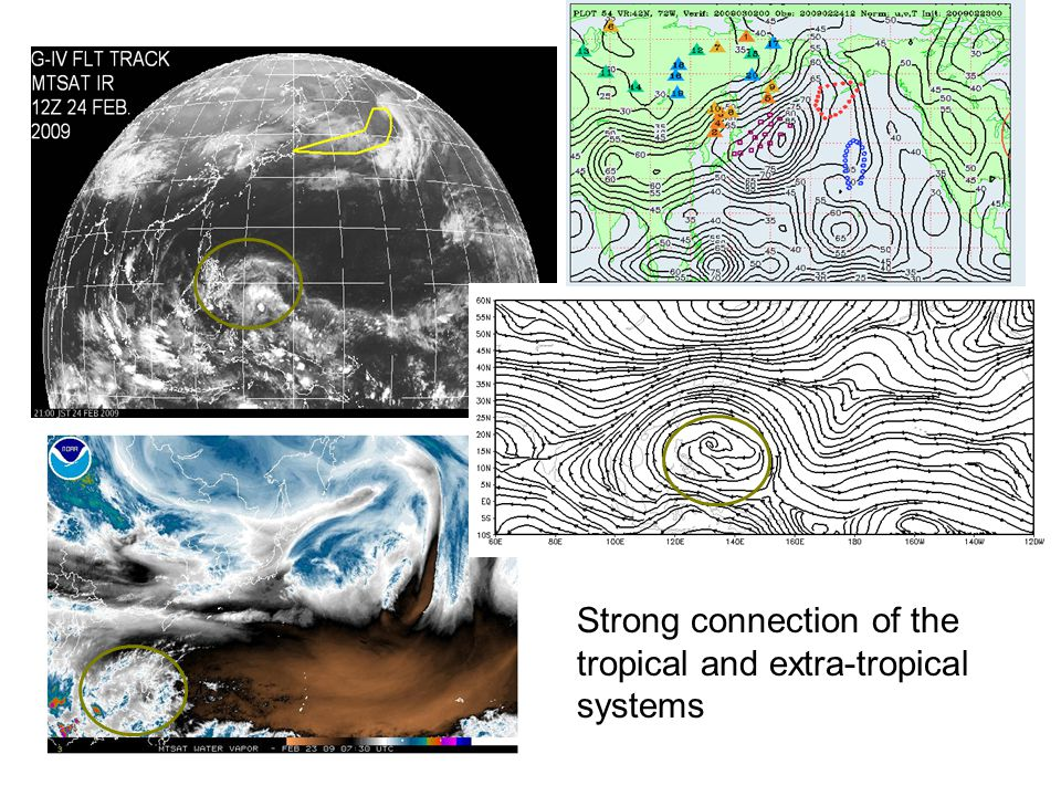 Strong connection of the tropical and extra-tropical systems