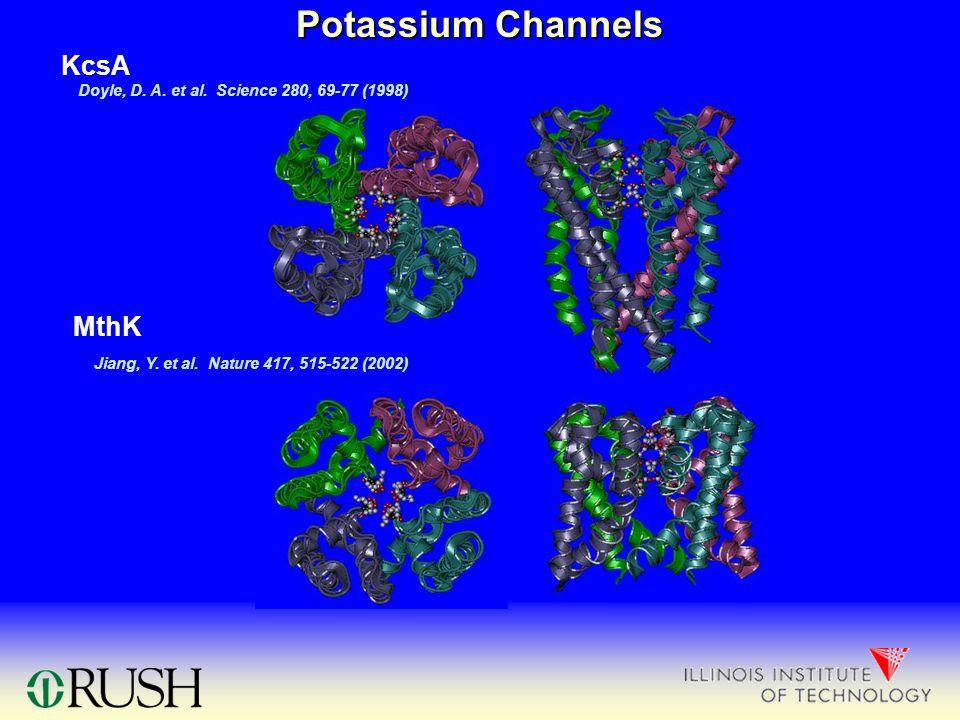 Potassium Channels KcsA MthK Doyle, D. A. et al. Science 280, 69-77 (1998) Jiang, Y. et al. Nature 417, 515-522 (2002)