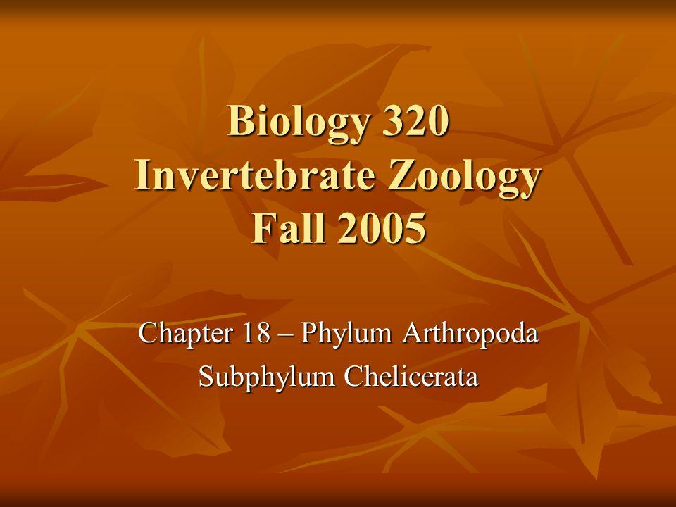 Biology 320 Invertebrate Zoology Fall 2005 Chapter 18 – Phylum Arthropoda Subphylum Chelicerata