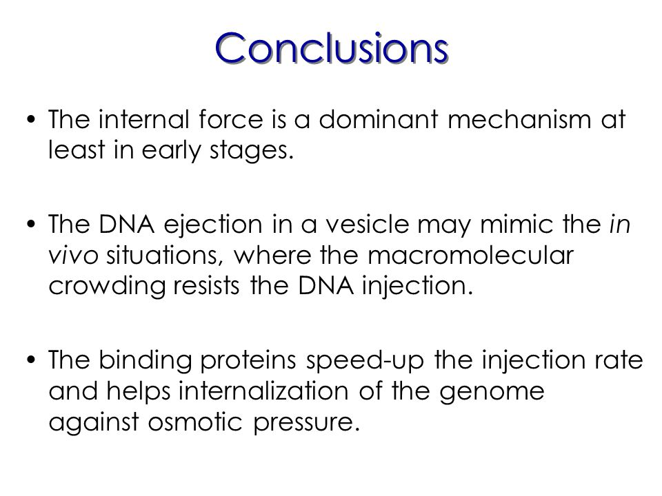 Conclusions The internal force is a dominant mechanism at least in early stages.