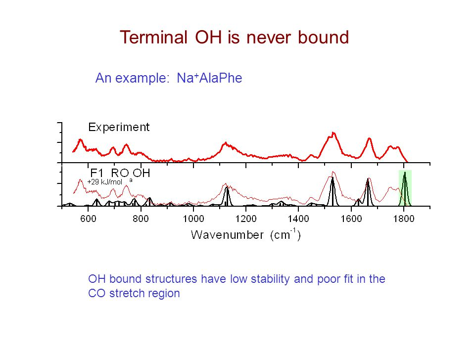 Terminal OH is never bound An example: Na + AlaPhe OH bound structures have low stability and poor fit in the CO stretch region