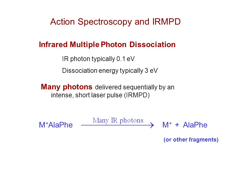 Action Spectroscopy and IRMPD Infrared Multiple Photon Dissociation IR photon typically 0.1 eV Dissociation energy typically 3 eV Many photons delivered sequentially by an intense, short laser pulse (IRMPD) M + AlaPhe M + + AlaPhe (or other fragments)