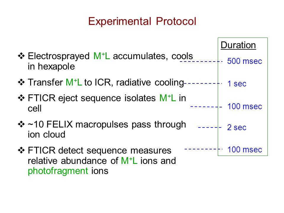 Peptide Model Binding Sites DFT / mpw1pw91 (kJ/mol) N t 61 O a 125 K+K+ Small-molecule model calculations OH 31 O t 84 R 69 N t 96 O a 165 OH 55 O t 118 R 99 Na +