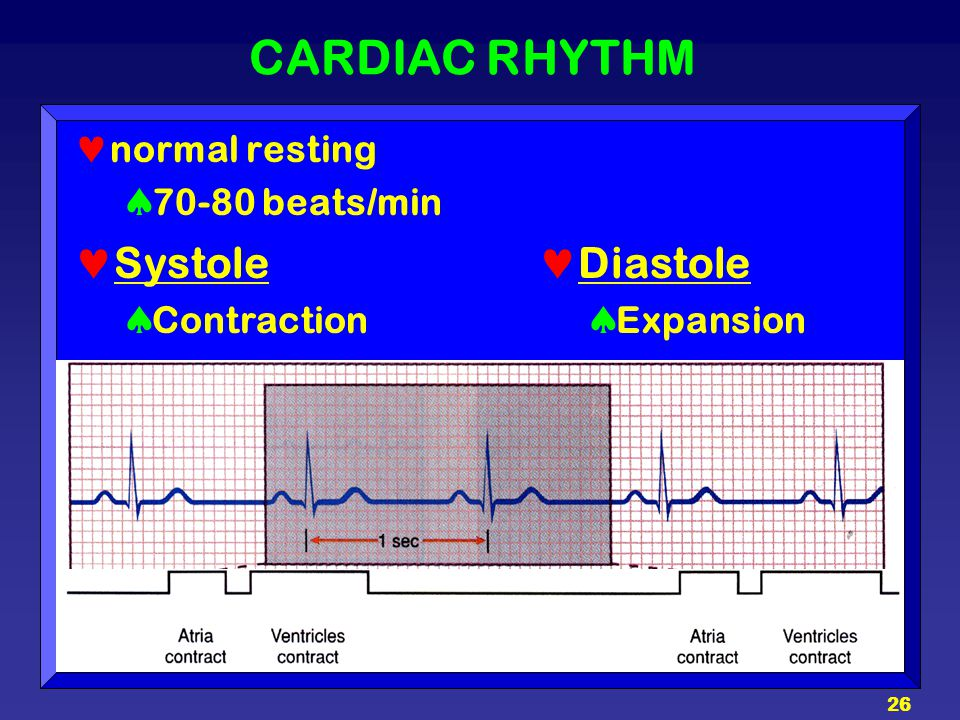 26 CARDIAC RHYTHM normal resting  70-80 beats/min Systole  Contraction Diastole  Expansion