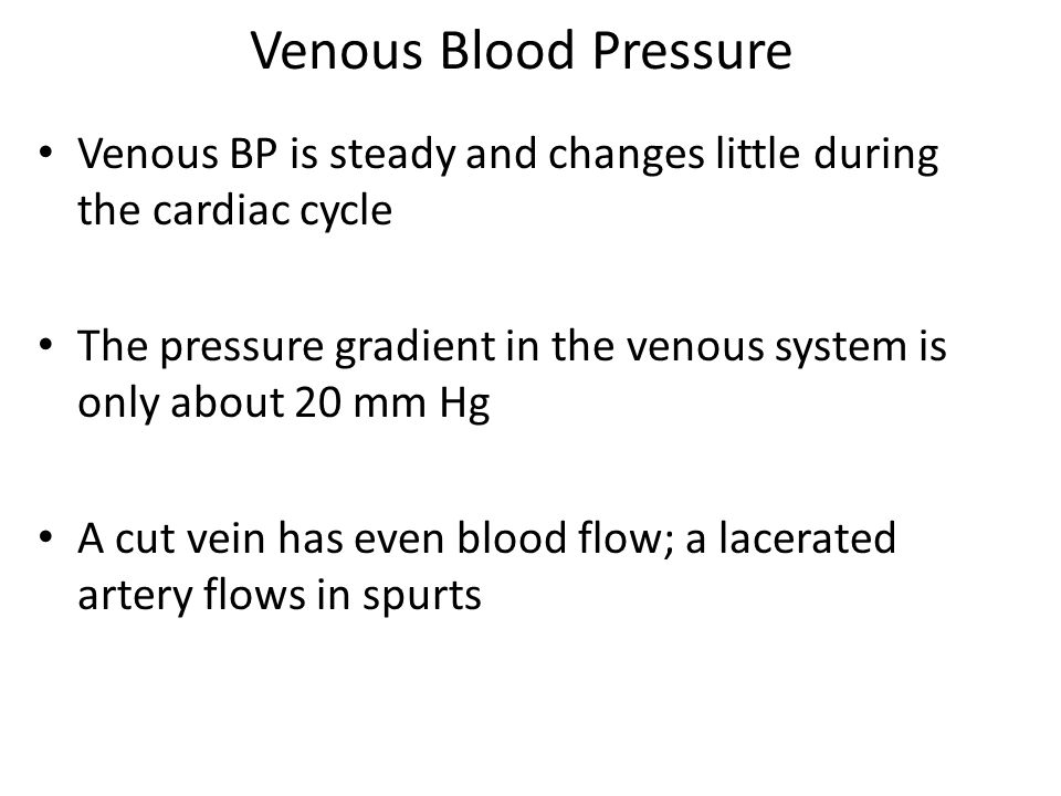 Venous Blood Pressure Venous BP is steady and changes little during the cardiac cycle The pressure gradient in the venous system is only about 20 mm Hg A cut vein has even blood flow; a lacerated artery flows in spurts
