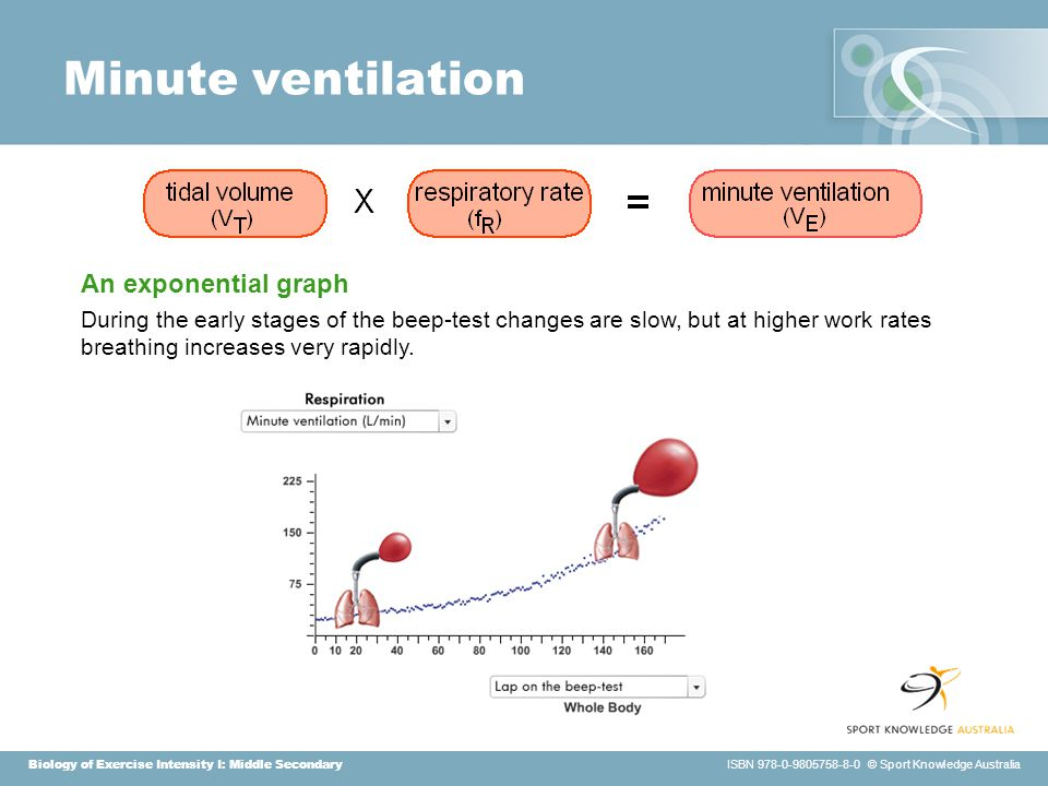 Biology of Exercise Intensity I: Middle Secondary ISBN 978-0-9805758-8-0 © Sport Knowledge Australia Minute ventilation An exponential graph During the early stages of the beep-test changes are slow, but at higher work rates breathing increases very rapidly.