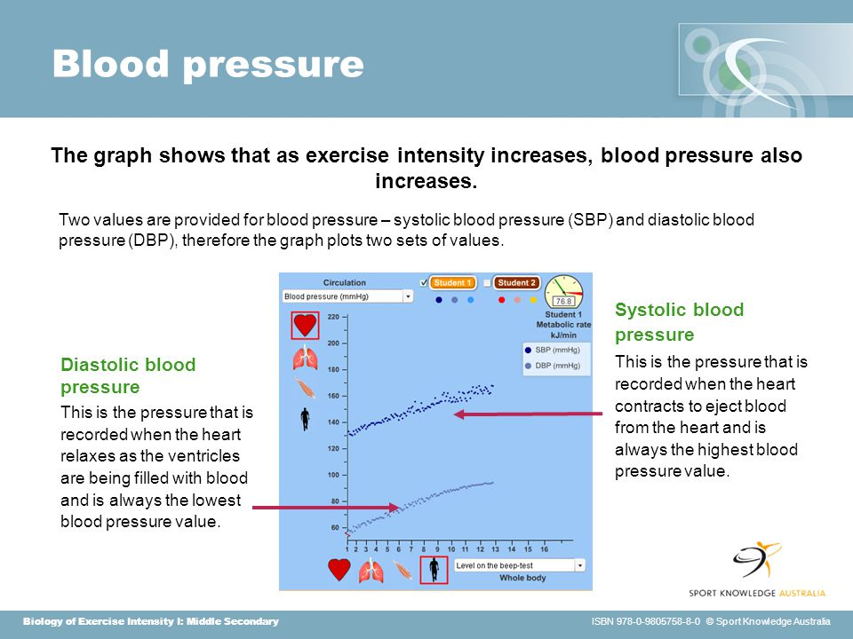 Biology of Exercise Intensity I: Middle Secondary ISBN 978-0-9805758-8-0 © Sport Knowledge Australia Blood pressure Two values are provided for blood pressure – systolic blood pressure (SBP) and diastolic blood pressure (DBP), therefore the graph plots two sets of values.